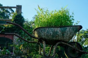 Ideas For Small Garden Spaces - Beautify Your Junk