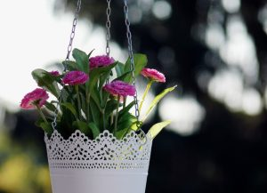 Ideas For Small Garden Spaces - Patterned Hanging Planters